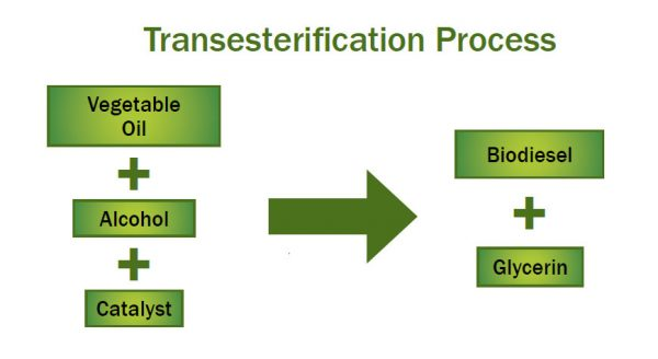 Transesterification Process